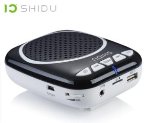 shidus308